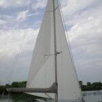 Gallinella 004